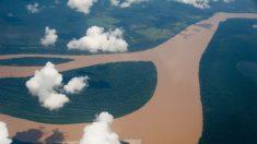 El Amazonas pierde capacidad de absorción de CO2