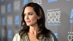 Angelina Jolie se hizo extirpar los ovarios y las trompas para evitar padecer cáncer