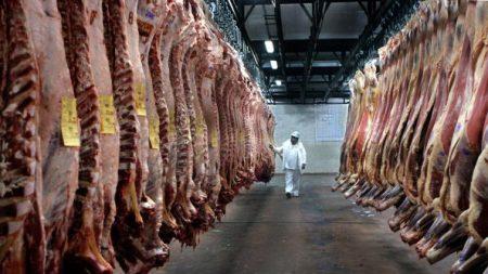 Argentina: Advierten por la grave situación de la industria frigorífica