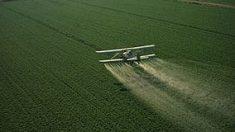 ¿Cuantos alimentos consumidos por europeos registraron pesticidas?