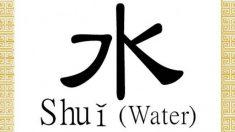 Shuǐ 水: carácter chino para agua