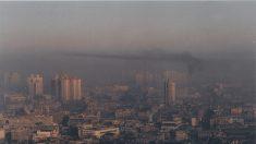 Alergias a la primavera reflejan contaminación de NO2 y ozono, gases del smog