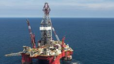 Cuatro muertos y 16 heridos en incendio en plataforma petrolera en Golfo de México