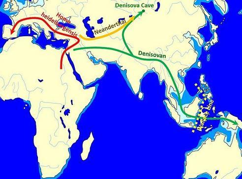 Genes de los denisovanos se encuentran los habitantes de Eurasia Oriental y América del Norte a modo generalizado. mapa muestra algunas movimientos de la población. ( John D. Croft. Wikimedia Commons)