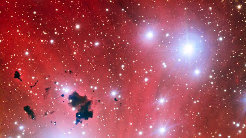 Imagen de archivo. Espectacular guardería estelar IC 2944. (Very Large Telescope de ESO)