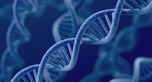 """Imagen de una """"hélice de ADN"""", vía Shutterstock"""