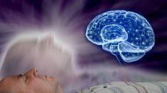 Estudio muestra experiencias fuera del cuerpo creadas en el cerebro