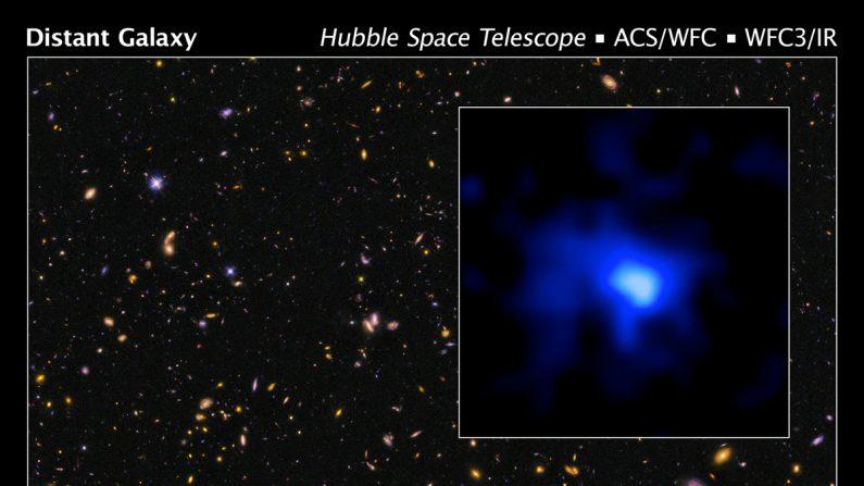El telescopio espacial Hubble indentificó la galaxia más lejana espectroscópicamente confirmada. (NASA, ESA, P. Oesch/ Yale U.)