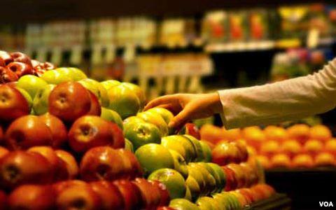 La comida que más se desperdicia son las frutas y las verduras, en parte debido a su volumen y caducidad.