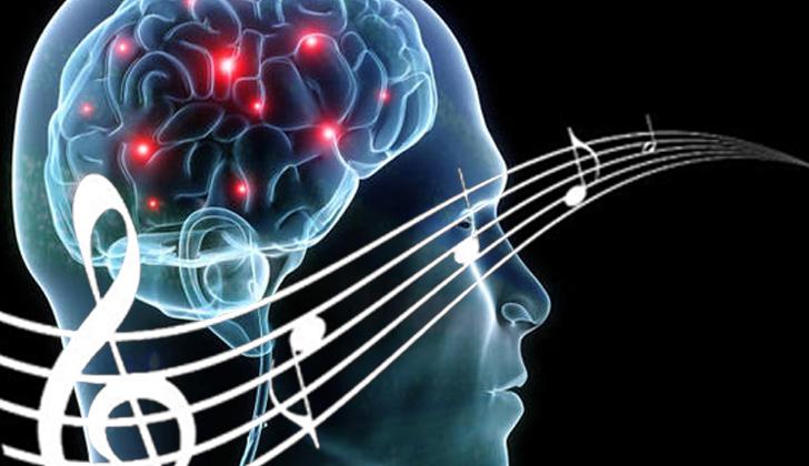 Los científicos afirman que los aspectos cruciales de la memoria musical son procesados en áreas cerebrales que no son las que habitualmente se asocian con la memoria episódica, la semántica o la autobiográfica. (Wikimedia Commons)