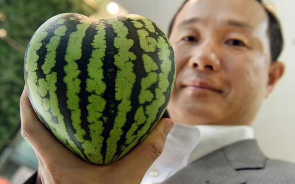El gerente de la tienda de frutas de lujo Shibuya Nishimura muestra una sandía con forma de corazón. (TORU YAMANAKA/AFP/Getty Images)