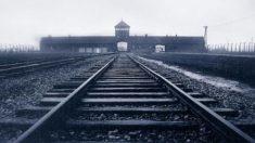 La lógica del campo de concentración