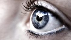 Mujer sufre infección de gusanos en sus ojos luego de una jornada de ejercicios en el campo