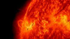 Tormentas solares sobre la superficie del Sol: cómo pronosticarlas