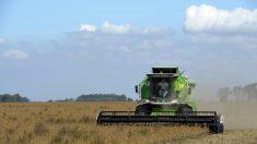 Argentina: Anuncia paro del campo por cinco días por cambios en la política agropecuaria
