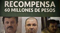 Buscan al Chapo Guzmán en la Patagonia argentina
