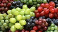 Beneficios de las semillas de uva para la salud