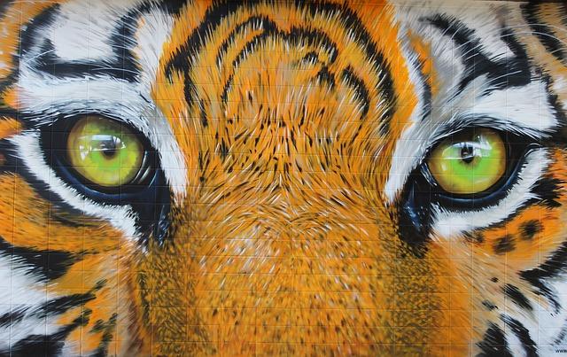 Ojos de tigre revela pupilas redondas, características de depredadores de mayor tamaño. (Pixabay)