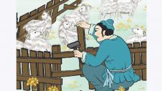 Dichos chinos: arreglar el corral después de perder la oveja (亡羊補牢)