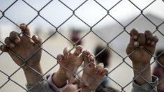 EE.UU. aporta 20 millones de dólares más para la crisis de refugiados en Europa