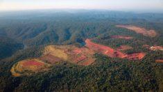 """""""La playa"""" se extiende en la Amazonia de Colombia a causa de la minería ilegal"""