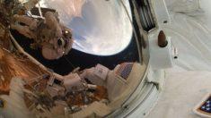 Detectan los microorganismos que habitan en la Estación Espacial Internacional