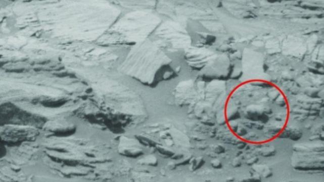 Encuentran a oso polar en foto tomada por la NASA en Marte