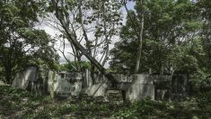 Colombia: Los ecos que aún resuenan desde Armero