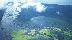 La Amazonia Azul: un tesoro en las aguas del Atlántico sur