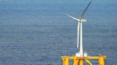 Costa Rica cierra el 2015 con récord de generación eléctrica sustentable (oficial)