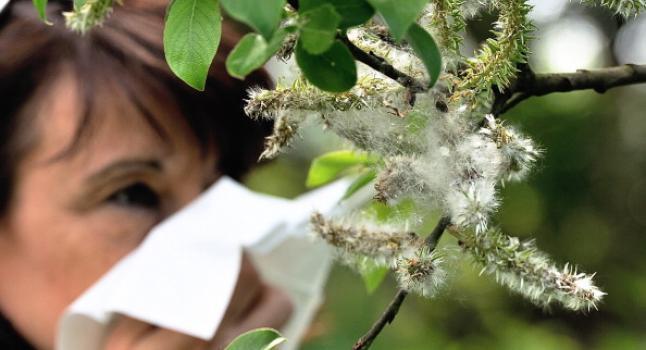 Alergias en México, mayo de 2014. (PHILIPPE HUGUEN/AFP/Getty Images)