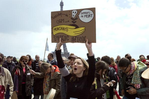 Manifestación contra Monsanto en París, en mayo de 2013. (FRED DUFOUR/AFP/Getty Images)
