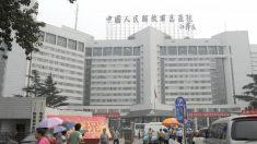 No todos celebran el premio de paz dado a funcionario de trasplantes chino