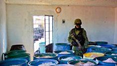 Cárteles mexicanos contratan niños desde los 11 años para traficar drogas en EE.UU.