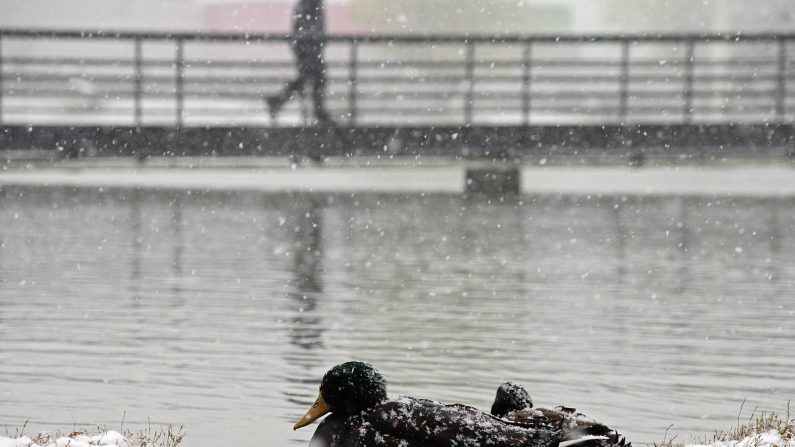(Photo credit should read Jesus Alcazar/AFP/Getty Images)