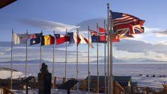 Chile construirá su primer muelle permanente en la Antártida