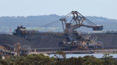 Australia aprobó ampliar una terminal de carbón cerca de la Gran Barrera de Coral