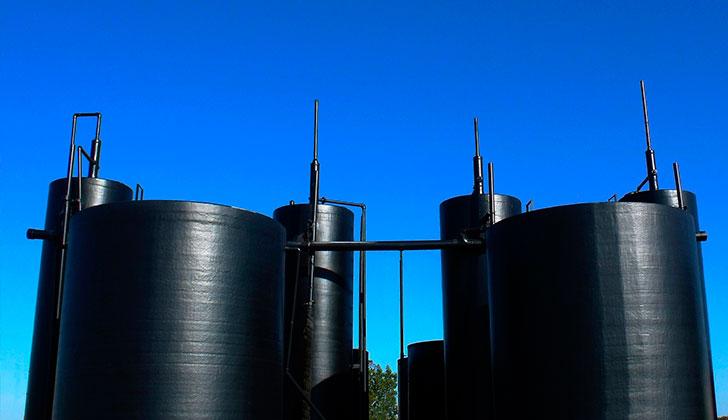 Desarrollan un combustible ecológico a base de algas y polvo de carbón. Foto: Pixabay
