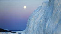 Groenlandia, en busca de las ventajas del cambio climático