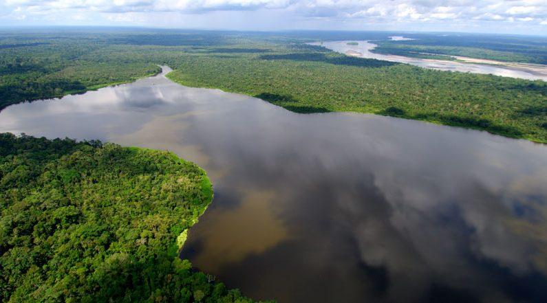 Amazonia (Wikipedia)