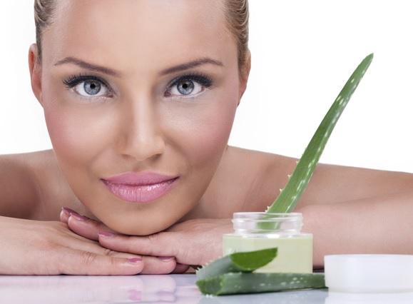 En este artículo conocerás 8 maneras diferentes en las que puedes utilizar el aloe o sábila de forma externa para que puedas aprovechar sus excelentes propiedades medicinales en la belleza, cosmética natural e higiene personal (Foto de archivo)