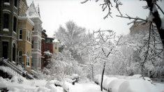 Cuidados y prevenciones ante la tormenta de nieve Jonás