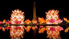 El Festival de la Linterna marca el final de las celebraciones del Año Nuevo Chino