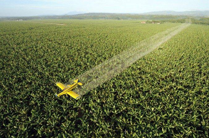 Argentina: piden restricciones a los agroquímicos procedentes de China. (Romeo Gacad/AFP/Imágenes Getty)
