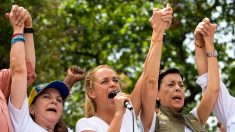 "Venezuela: Mitzy Capriles ""implora"" apoyo de UE a la AN"