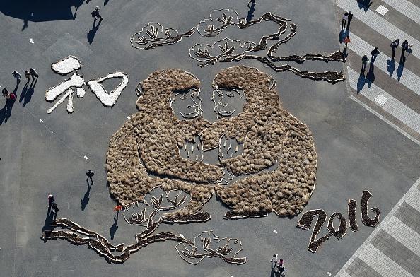 """Vista aérea muestra a los visitantes mirar una imagen de 24 x 25 m (ancho) de dos monos para celebrar el """"año del mono"""" en el parque de la costa de Hitachi en la ciudad japonesa de Hitachinaka en la Prefectura de Ibaraki, a unos 100 kilómetros al norte de Tokio el 03 de enero de 2016. (TOSHIFUMI KITAMURA/AFP/Getty Images)"""