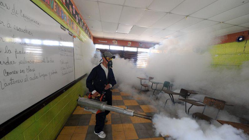 Personal del Ministerio de Salud fumigar contra el mosquito Aedes aegypti , vector del dengue, el virus Chikungunya y Zika en Tegucigalpa, el 1 de febrero de 2016. El presidente de Honduras, Juan Orlando Hernández declaró el viernes al país en un estado de alerta preventiva, debido a que el virus Zika que en los últimos 44 días mataron a una persona infectada y algunas 1000. (Foto: ORLANDO SIERRA/AFP/Getty Images)
