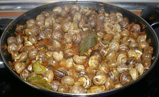 Caracoles moros y cristianos picantes una receta tuejana - Como preparar unas judias verdes ...