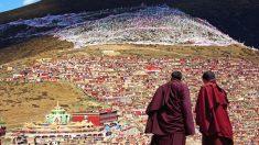 El colapso del imperio tibetano fue una gran lección