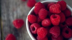 Frambuesas, delicias saludables para incluir en la dieta